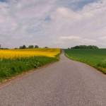 """Dla samorządowych zarządców dróg często i takie odcinki to """"obszar zabudowany"""". Fot. rgbstoc.com"""