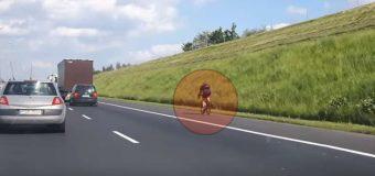 Rowerzysta nagrany na autostradzie A2. Złapany przez policję