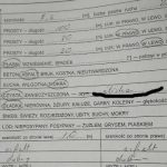 - Policjant w opisie drogi po wypadku napisał, że była ona ,ale już nikt nie zainteresował się faktem dlaczego droga była śliska 31 maja