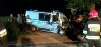 Albigowa. Radiowóz uderzył w ciągnik. Ranni policjanci i pies