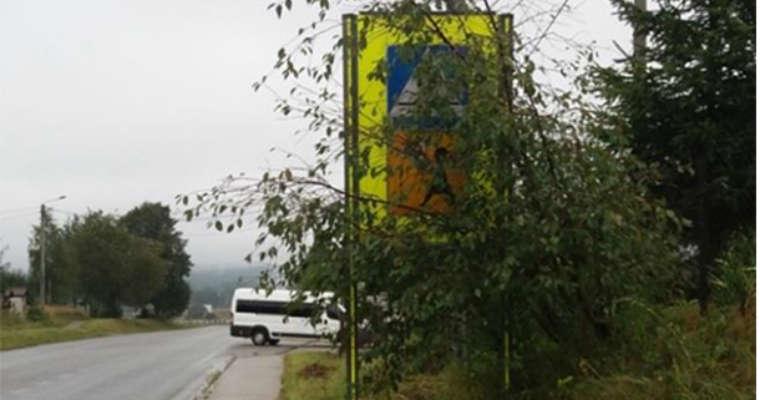 Zasłonięty przez gałęzie znak. Starodroże w gminie Zagnańsk. Fot. Materiały kontrolne NIK
