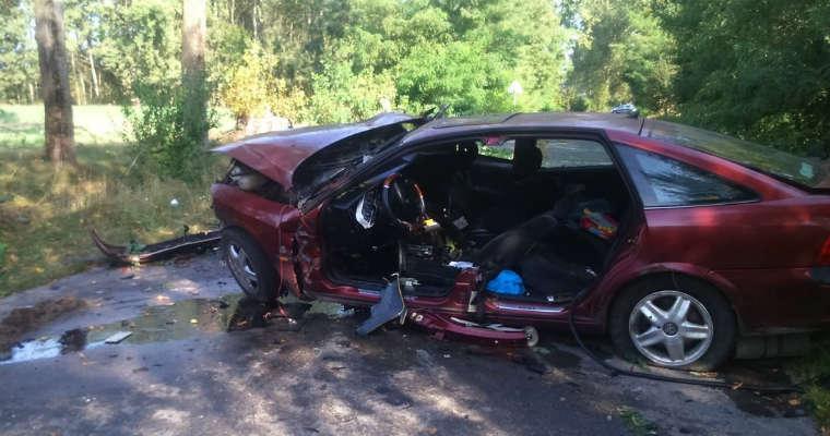 Wypadek w Rudnie (Lubelskie). Fot. Policja