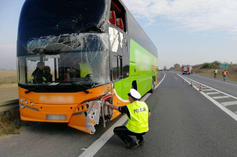 Kierowca autokaru Flixbus doprowadził do wypadku pod Świeciem. Fot. Policja