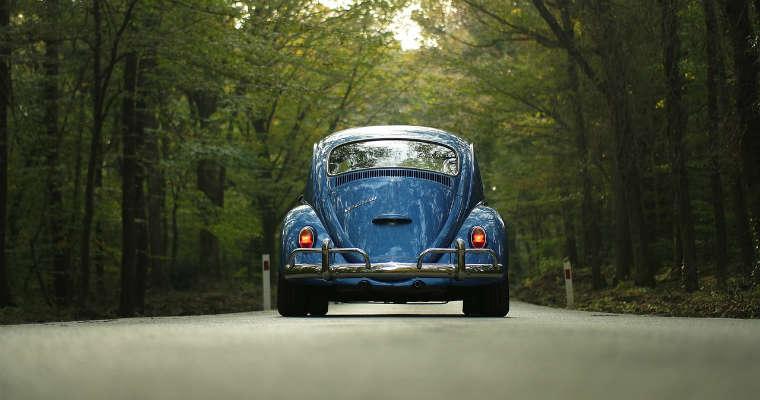 Samochód na drodze w lesie. Fot. CC0