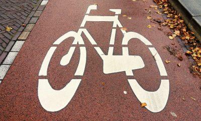 Droga dla rowerów. Fot. CC0