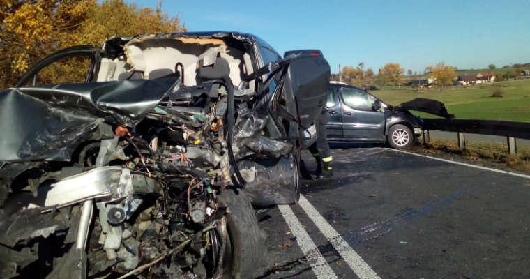 Śmiertelny wypadek w Rogaszycach na DK11. Fot. policja