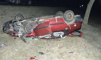 Kierowca na drodze koło Zamościa próbował ominąć sarnę leżącą na drodze i potrącił innego kierowcę, który wyszedł z auta. Fot. Policja