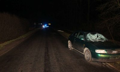 Śmiertelne potrącenie pieszej niedaleko miejscowości Rzadkwin. Fot. Policja