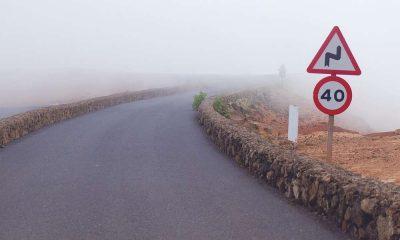 Znaki drogowe. Fot. CC0