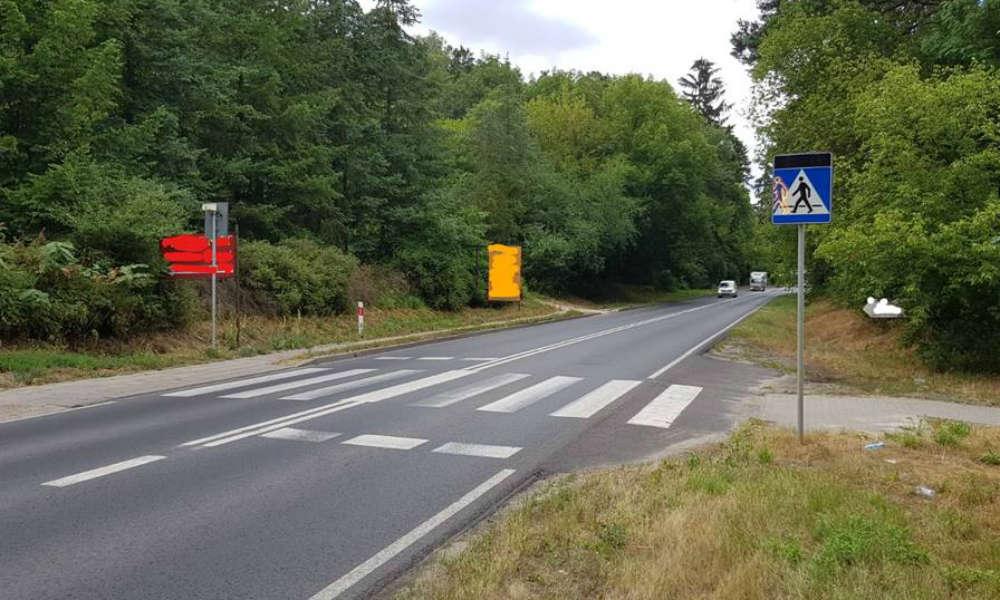 Przejście dla pieszych jest dobrze oznaczone, są nawet znaki aktywne Fot. VideoRadar