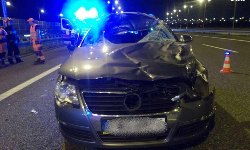 Zderzenie z jeleniem na autostradzie A4. Fot. Policja