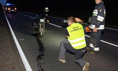 W zderzeniu z sarną zginęli motocyklista i jego pasażerka Fot. Policja