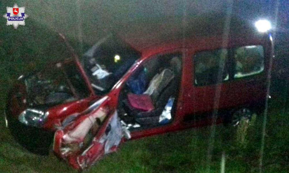 Śmiertelny wypadek w miejscowości Żyrzyn na trasie S17 Fot. Policja