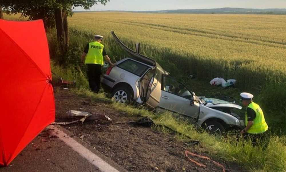 Śmiertelny wypadek w Borczu spowodował kierowca, który zasnął za kierownicą Fot. Policja